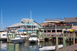 Oak Bluffs Marina, Martha's Vineyard