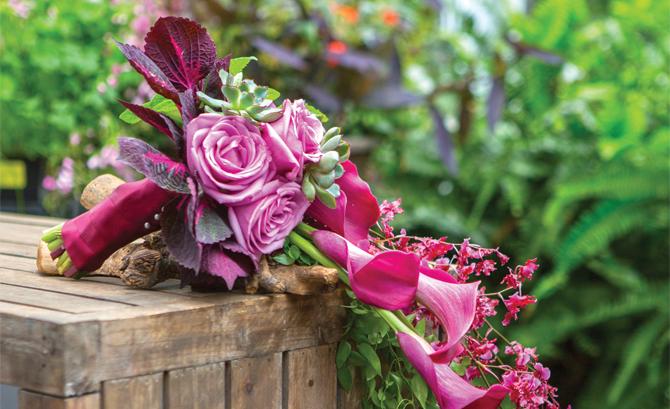 McArdle's Florist & Garden Center