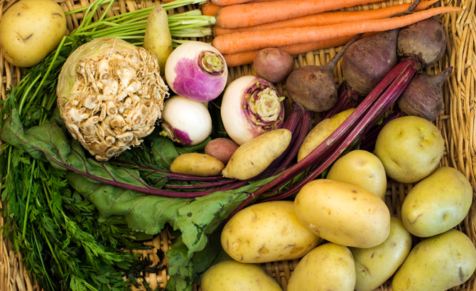Discover the benefits of these abundant fall vegetables.