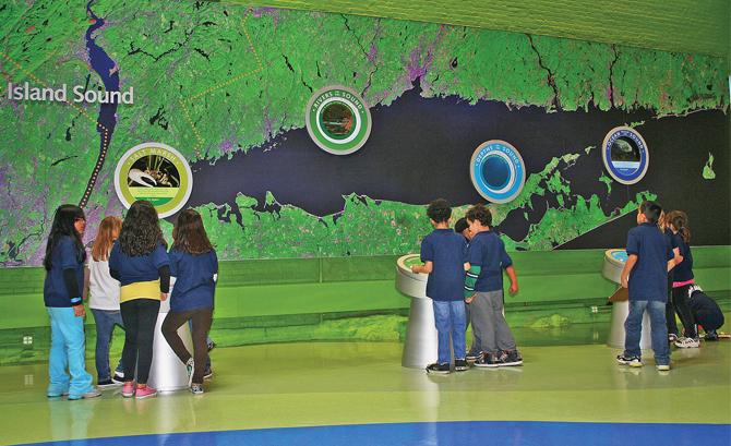 The recently renovated Maritime Aquarium