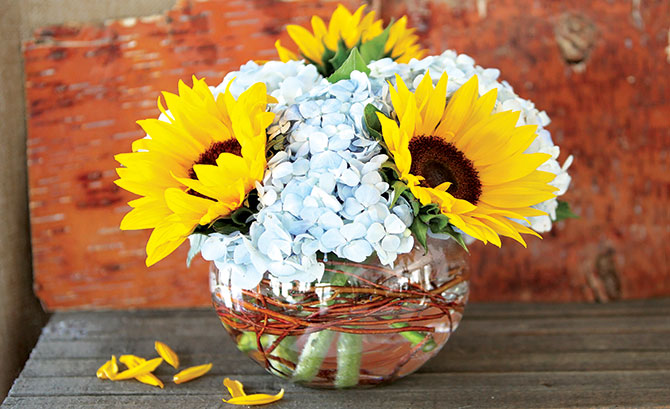 Sunny Daze: An example of Zinsmeyer's less-is-more mantra: In what was originally intended as a simple arrangement of hydrangeas